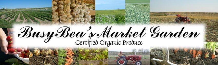 Busy Bea's Market Garden - Certified Organic Produce