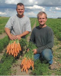 Leffers carrots