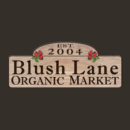 Blog-blush-lane-logo-450