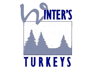 Winter's Turkeys