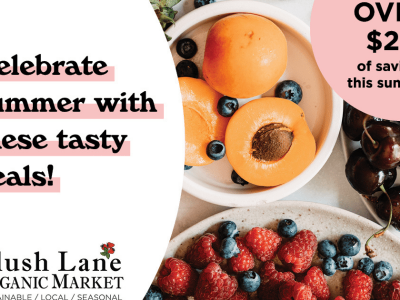 Summer Savings Blog Banner